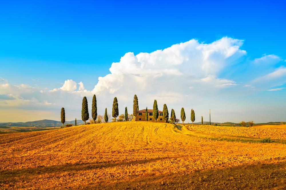 Il Caseificio Fattoria Buca Nuova si trova a Pienza in Val d'Orcia, zona al sud della Toscana
