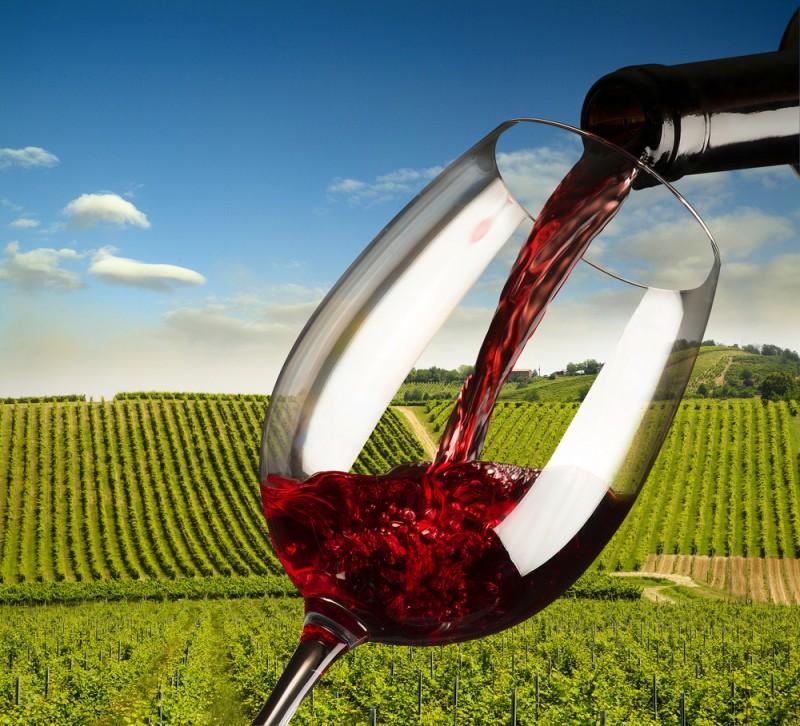Il Morellino di Scansano è un tipico vino rosso toscano proveniente dalla Maremma