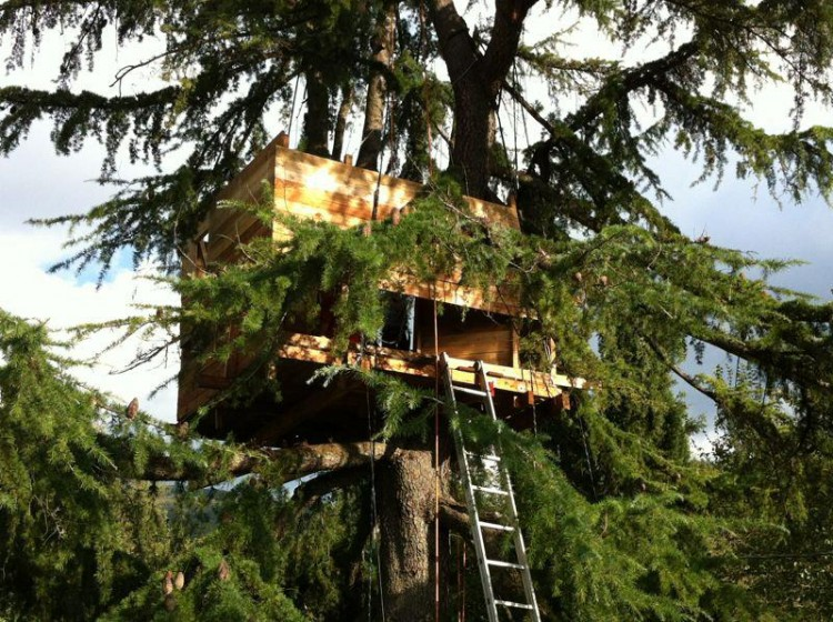 Il tree sleeping in Toscana viene praticato in molto zone, soprattutto Maremma e Mugello