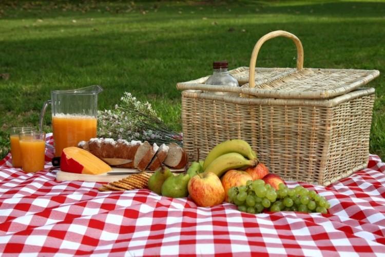 7 idee originali per un picnic in toscana