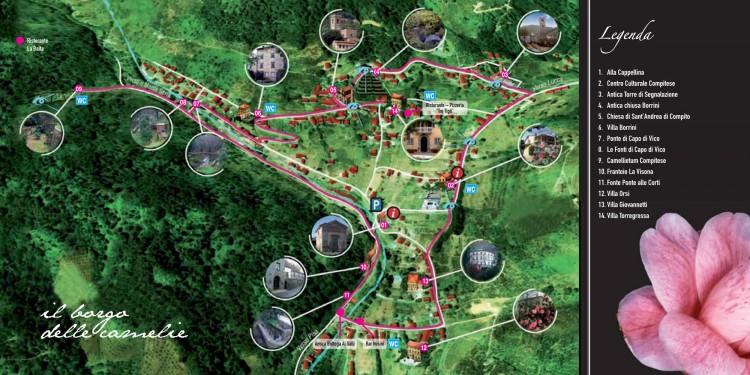 La manifestazione Antiche Camelie della Lucchesia si svolgerà nel territorio di Capannori, in provincia di Lucca