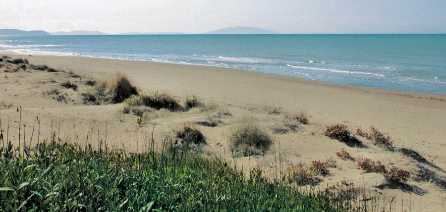 Le Spighe Verdi sono un riconoscimento che, come le Bandiere Blu per il mare, valutano i comuni rurali. La Toscana ne ha conquistate 3