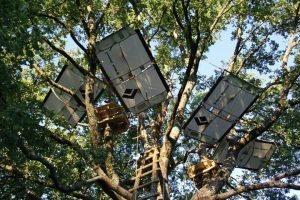 Il tree sleeping in Toscana è un'attività sempre più praticata, soprattutto in Maremma e in Mugello