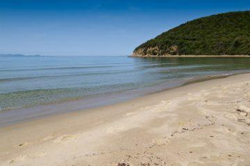 Cala Violina è una delle 6 spiagge più belle della Toscana, luoghi ideali dove trascorrere un weekend