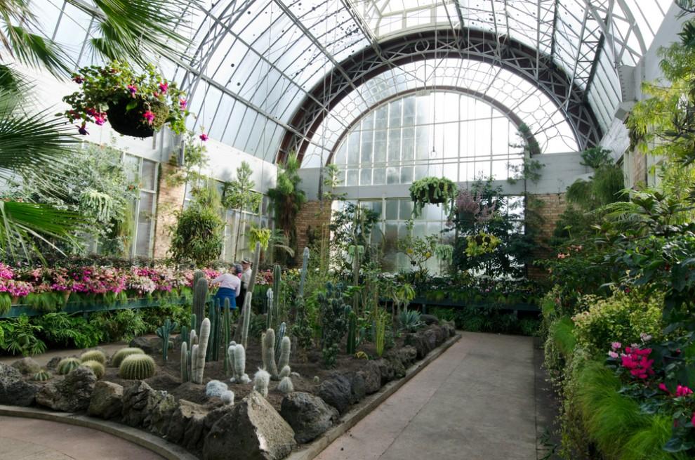 Mostra dei fiori di firenze al giardino dellorticoltura