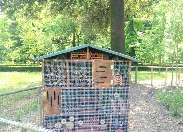 A Firenze, nel Parco delle Cascine, è nata la prima Casa delle Coccinelle della Toscana