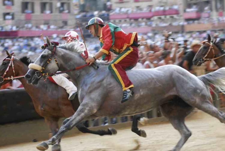 Palio di Siena 2014: usciti i nomi dei cavalli in gara in Piazza del Campo