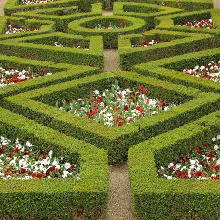 Giardino di boboli 6 curiosit da sapere assolutamente for Realizzazione giardini firenze