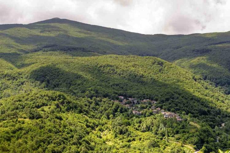 Il Parco dell'Orecchiella si trova in Garfagnana, Toscana
