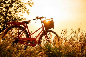 Risultati immagini per bicicletta barcellona
