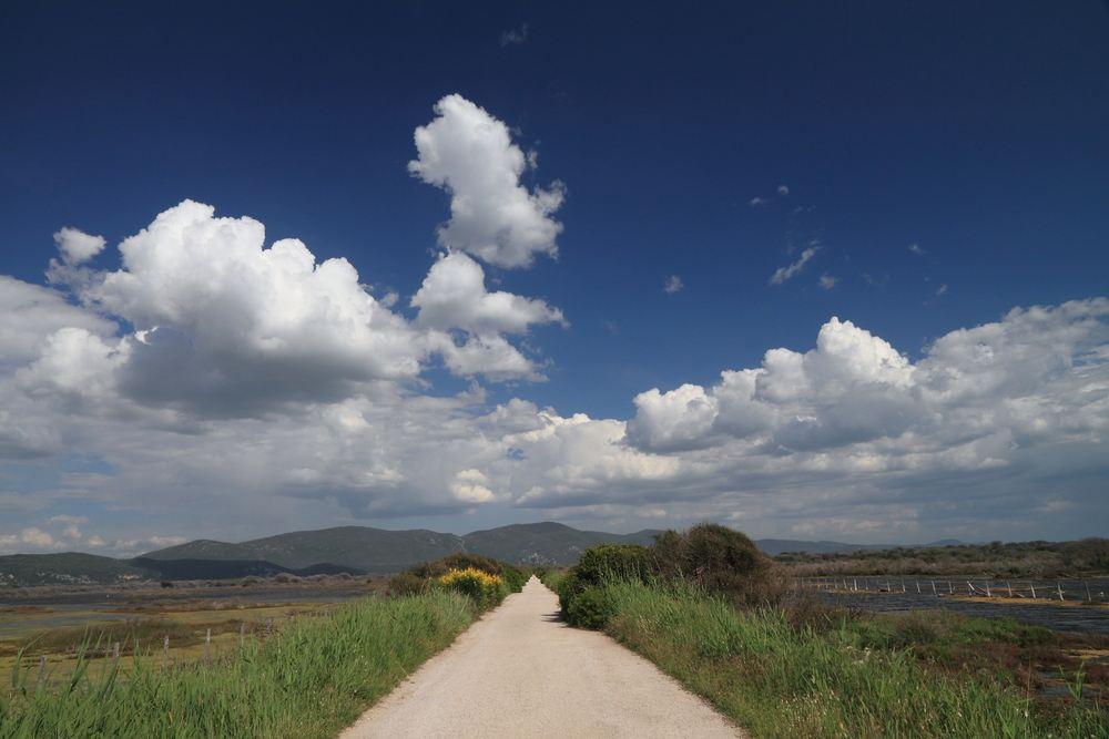 Strada in Maremma nel Parco naturale dell'Uccellina