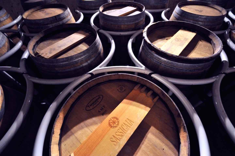 Il Sassicaia 2015 è stato eletto miglior vino del mondo da Wine Spectator, confermando il primato toscano nella scena dell'enologia mondiale.