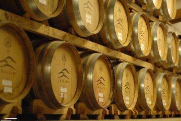 Gold Label è il luxury wine dell'azienda I Balzini.Antonella D'Isanto e Barbara Tamburini raccontano come nasce un'eccellenza made in Tuscany