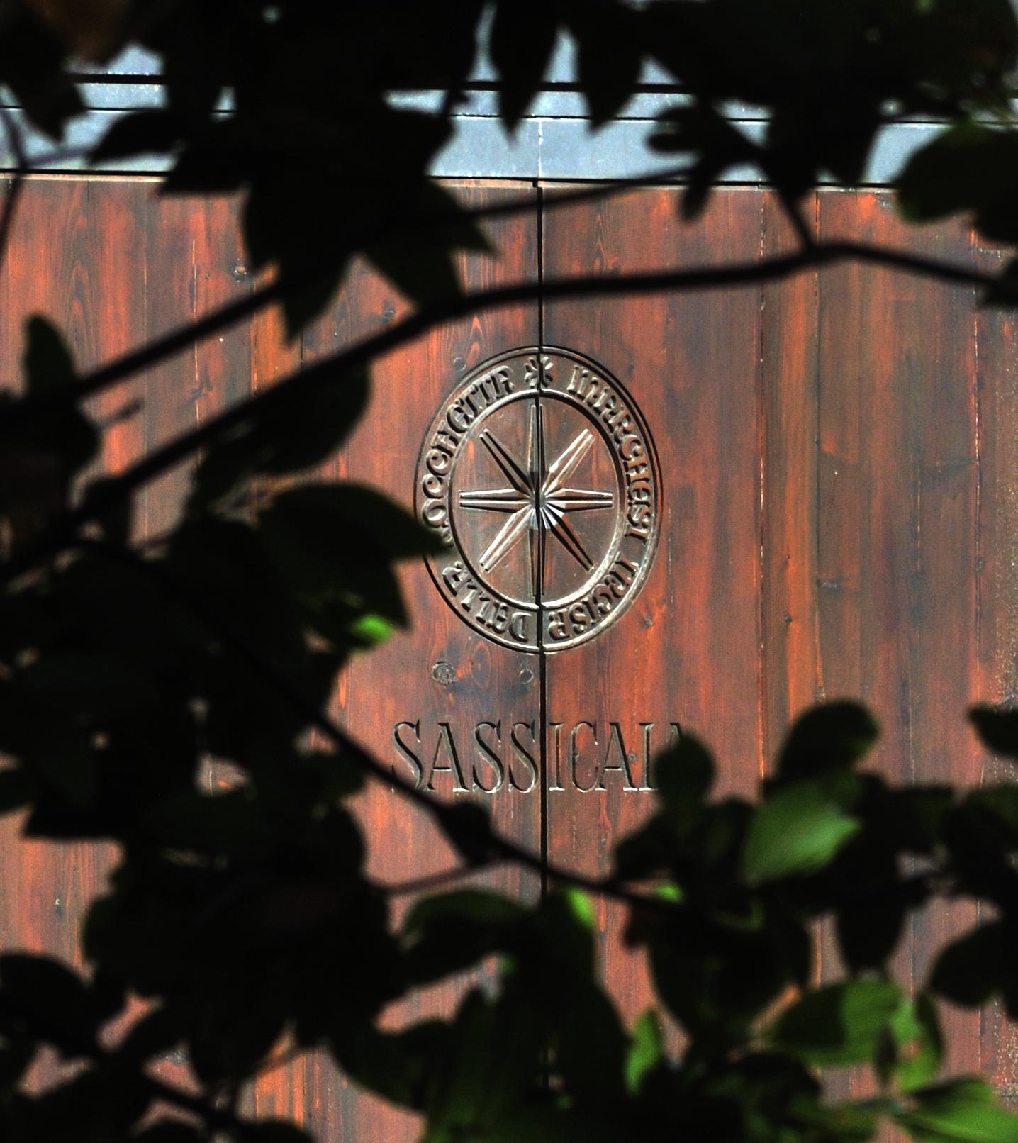 Il Sassicaia è un vino toscano d'eccellenza; nato a Bolgheri negli anni '40,oggi è uno dei migliori prodotti tipici della Toscana