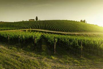 Luxuri Hotel a Gaiole in Chianti in antichi castelli, un weekend in Toscana all'insegna del relax, del buon vino, piatti tipici e paesaggi mozzafiato