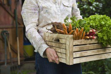 Prodotti biologici: qual è la differenza tra prodotti bio, prodotti naturali e km0? E come sono fatti i cosmetici bio? Chiarezza per un consumo consapevole