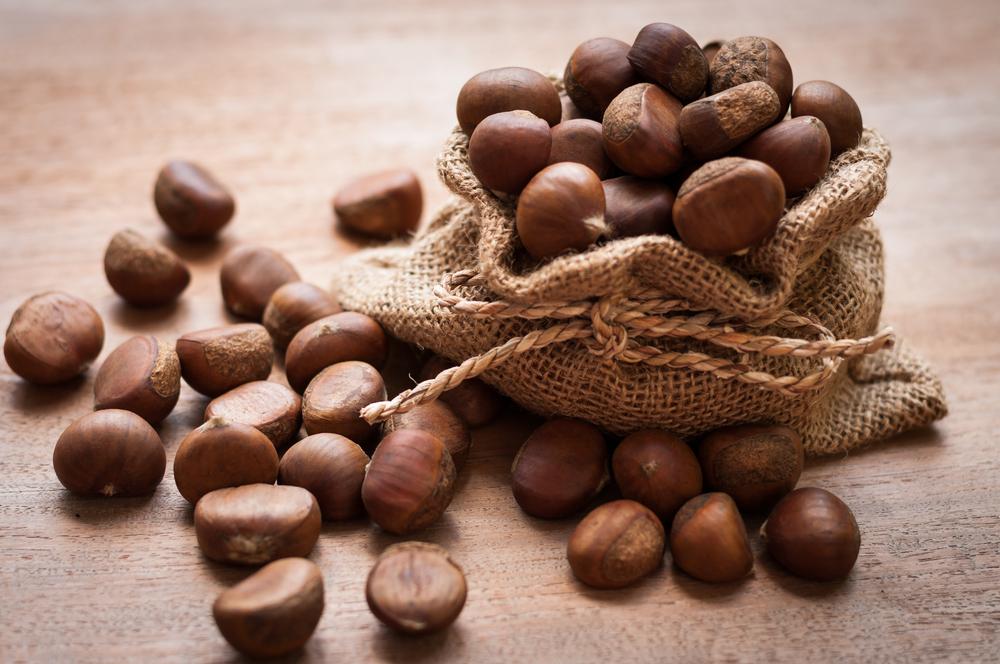 Le castagne in Toscana sono uno dei prodotti tipici più diffusi insieme alle olive e all'uva