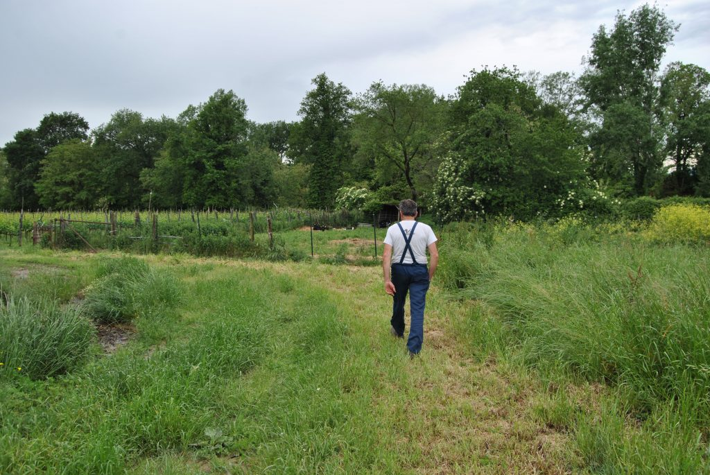 La Via del Latte è un percorso che unisce 29 allevamenti nel Mugello in Toscana, selezionati da Mukki Latte che racconta l'identità di un territorio, il Mugello