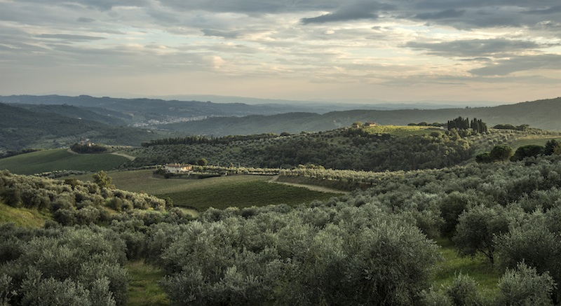 Enogastronomia toscana: alla scoperta dei prodotti tipici e vini docg di Prato e Artimino