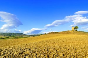 Il Parco Naturale della Maremma è una riserva naturale della Toscana, un territorio antico in equilibrio tra uomo e natura, che nasconde storia e leggende