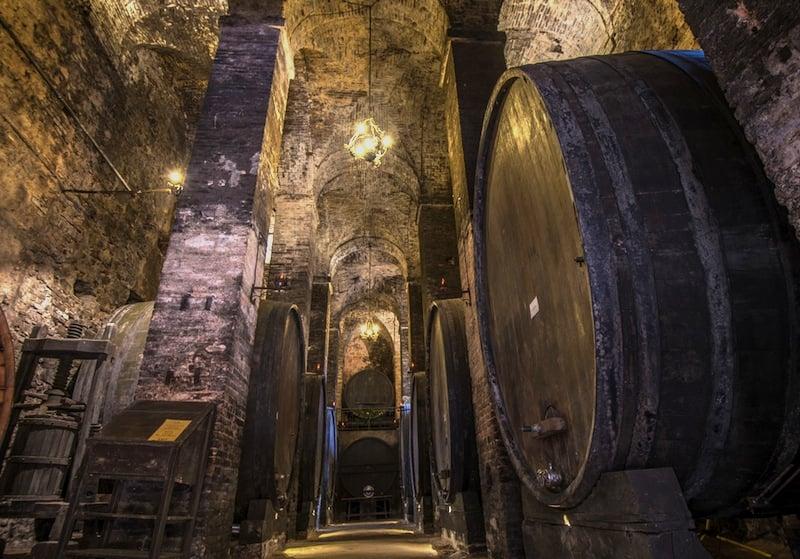 Dal 7 al 9 ottobre a Montepulciano i terrà la festa per i 50 anni del Consorzio del Vino Nobile: cantine aperte, concerti e degustazioni