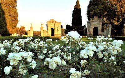 La Villa di Geggiano a Castelnuovo Berardenga (SI) è un'azienda agricola biologica, una guest house e un luogo ideale per eventi privati e matrimoni in Toscana