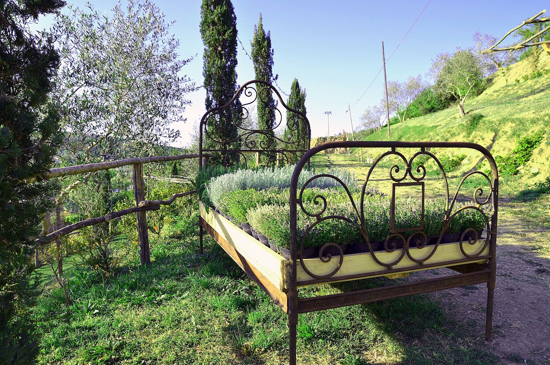 Serra La Quercia è un'oasi immersa nella campagna fiorentina dove realizzare i propri desideri: vivaio, giardino, eventi, fattoria didattica, Cene Segrete...