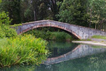 Il Parco della Versiliana, tra Pietrasanta e Forte dei Marmi, è uno spazio di verde pubblico ricco di storia, per eventi estivi all'aperto