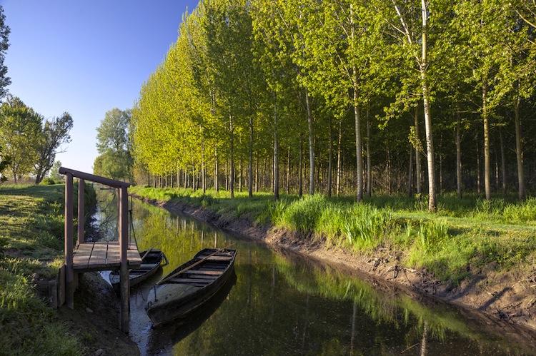 Il Padule di Fucecchio con i suoi 2000 ettari è la più grande palude interna di Italia, per un weekend in Toscana tra natura e prodotti tipici.