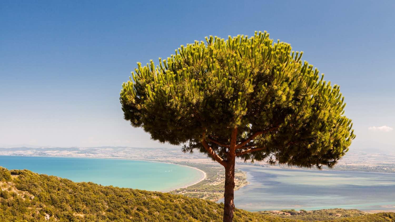 La Laguna di Orbetello alle pendici del Monte Argentario nella Bassa Maremma toscana è un patrimonio di biodiversità da preservare con cura