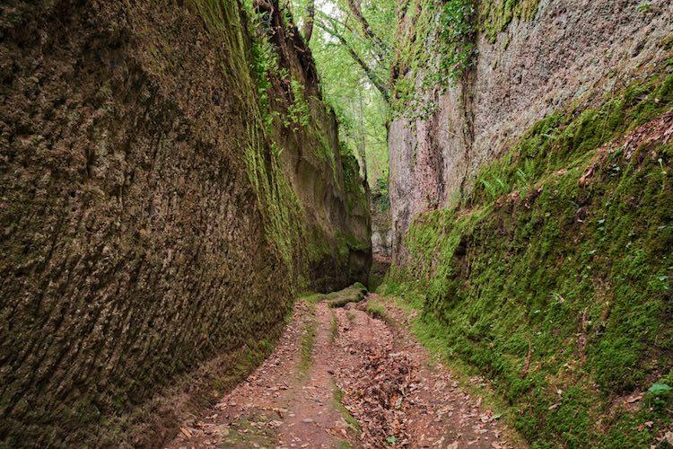 Perché la Toscana si chiama Toscana? Ovvero quali sono le origini del nome Toscana, una delle terre più conosciute al mondo