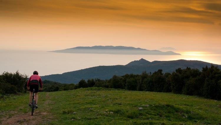 La Maremma toscana si divide in 2 grandi macro aree: la Maremma Pisana o Alta Maremma e la Maremma Grossetana, comunemente detta solo Maremma.