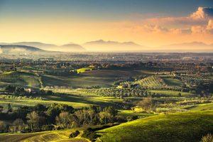 La Maremma, bellissimo territorio della Toscana, si divide in 3 zone: Maremma Pisana (o Settentrionale), Maremma Grossetana e Maremma Laziale