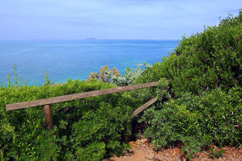 Perché la costa livornese viene chiamata costa labronica? E quali sono le cale vicino a Livorno sulla strada del Romito dove andare al mare?
