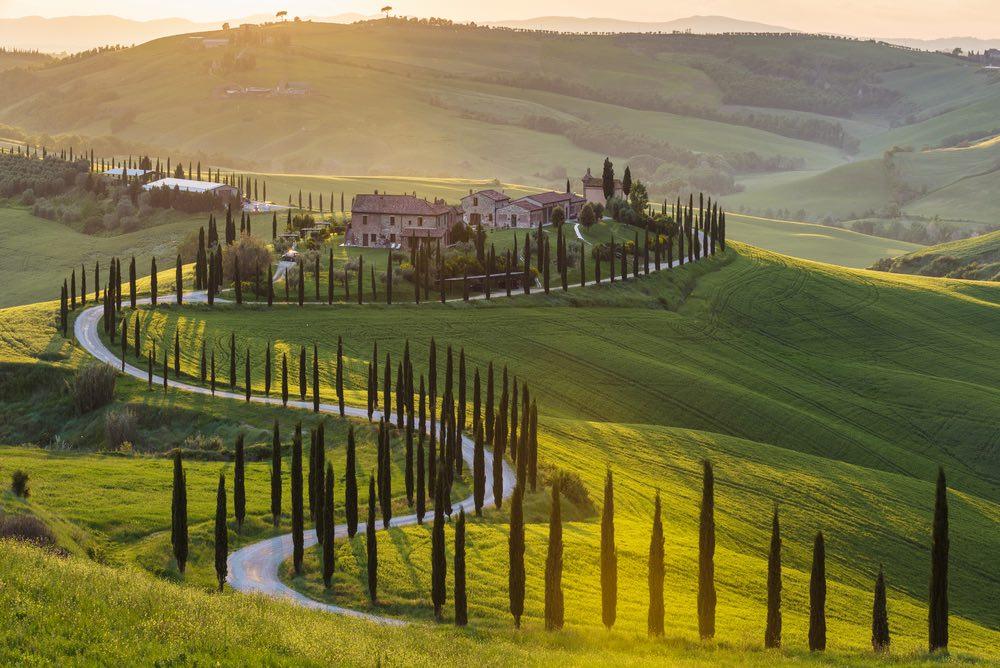 I cipressi in Toscana sono un simbolo di eternità e di immortalità e sin dai tempi antichi sono i protagonisti assoluti del panorama toscano
