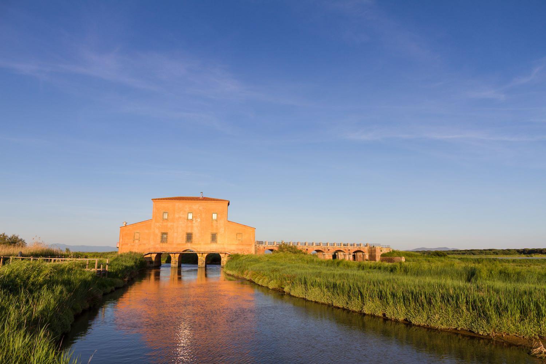 La Diaccia Botrona è una Riserva Naturale vicino a Castiglione della Pescaia nella Maremma grossetana, ideale per il bird watching in Toscana