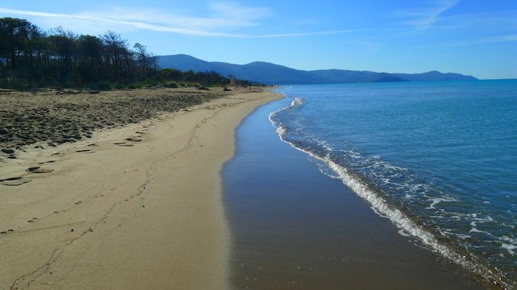 L'Oasi San Felice è un'oasi del WWF nella Maremma grossetana. Si trova tra la Riserva Naturale della Diaccia Botrona e Marina di Grosseto