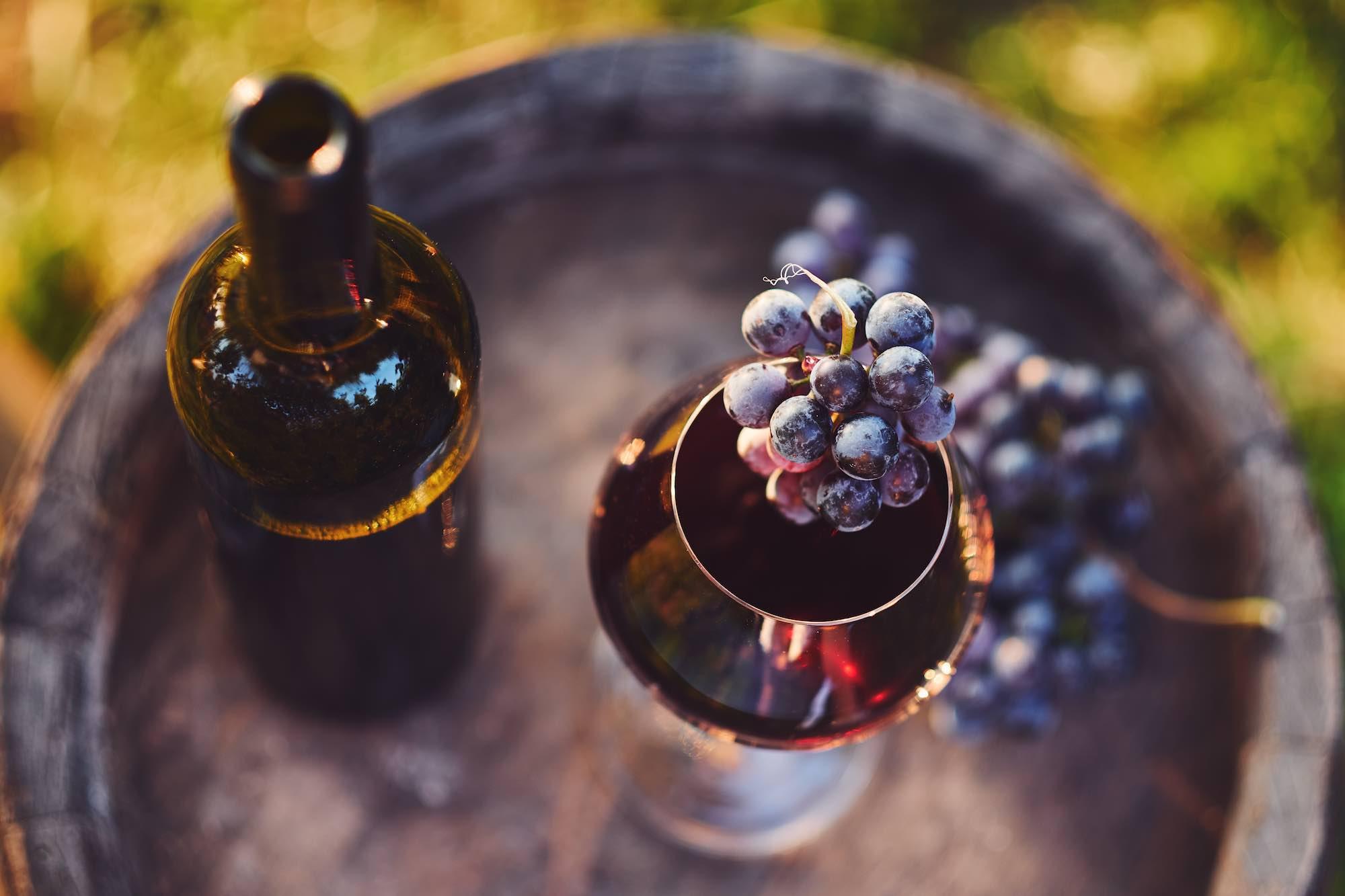 Eric Asimov, storico winemaker e giornalista del New York Times, ha scritto un elogio al Chianti Classico, il vino toscano per eccellenza.