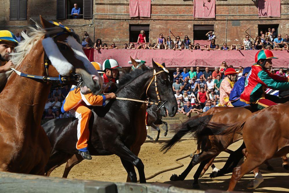Cavalli in corsa durante il Palio di Siena