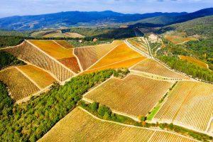 Vigne del Chianti in autunno.
