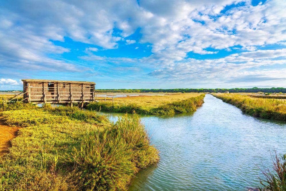 La Riserva della Diaccia Botrona si trova a Castiglion delle Pescaia