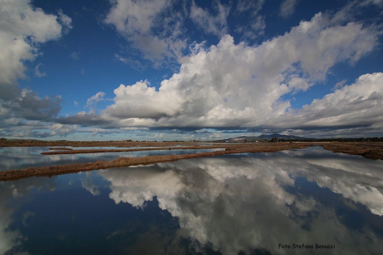 L'Oasi Padule Orti Bottagone si trova alle porte di Piombino, è una delle 17 oasi del WWF della Toscana