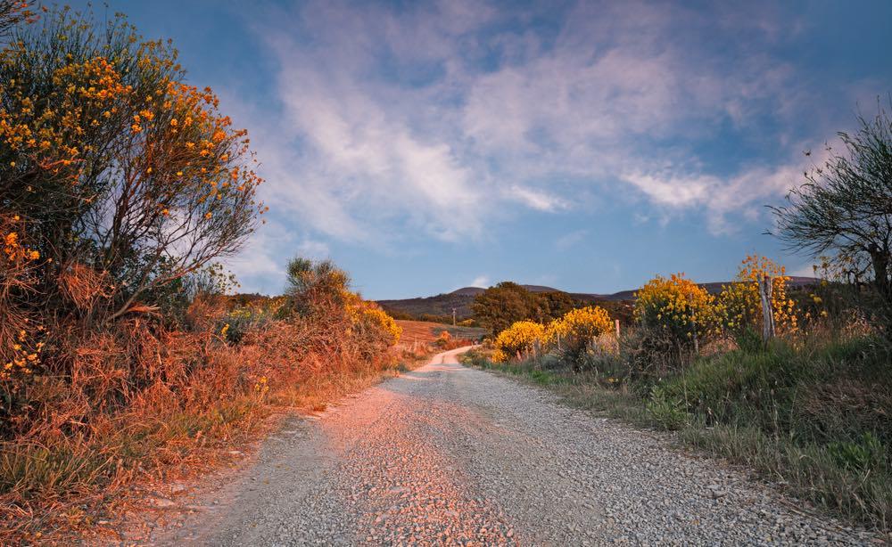 Strada sul Monte Amiata al tramonto