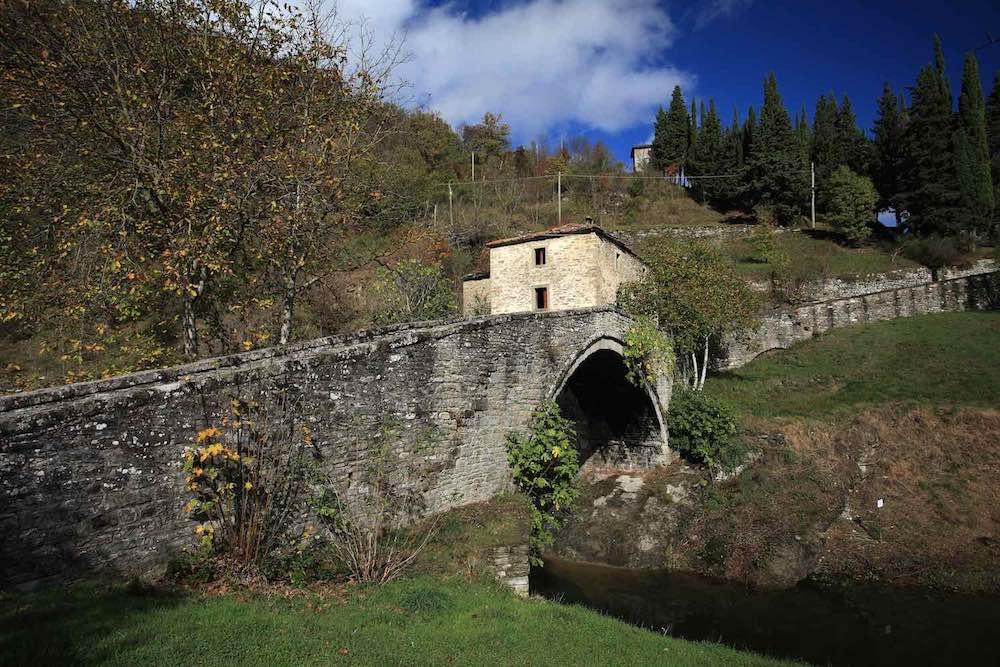 Antica strada Ridragoli nel Parco delle Foreste Casentinesi in Toscana