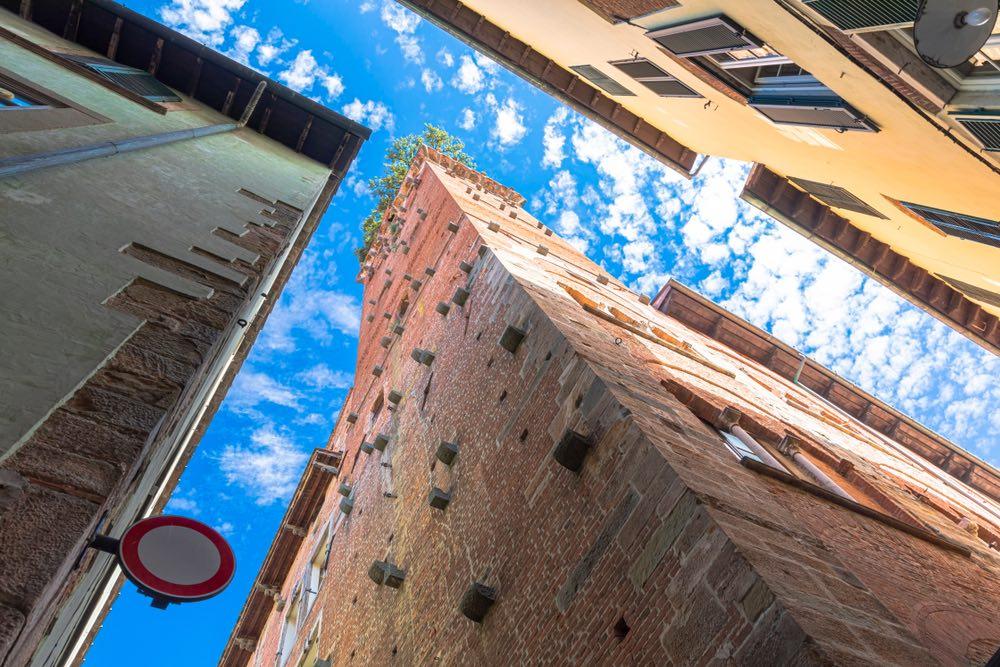 La Torre Guinigi è una delle famose torri di Lucca