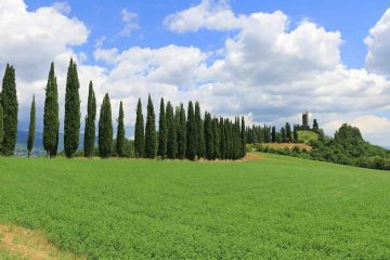 Il Castello di Romena si trova in Toscana nella zona del Casentino