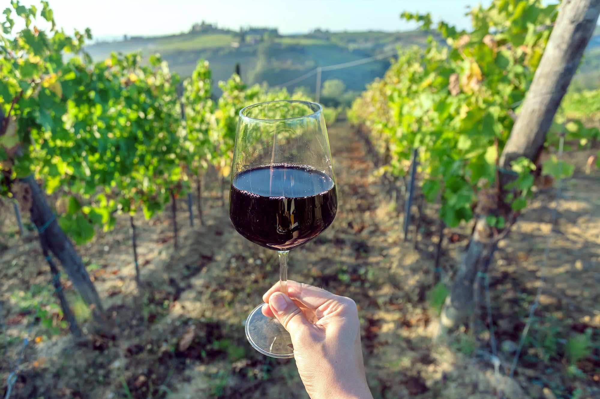 Bicchiere di vino rosso nelle vigne in Toscana