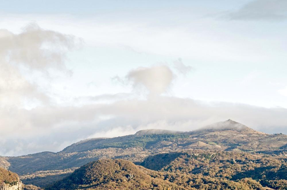 La Riserva Bosco Rocconi si trova sul Monte Amiata nel comune di Roccalbegna