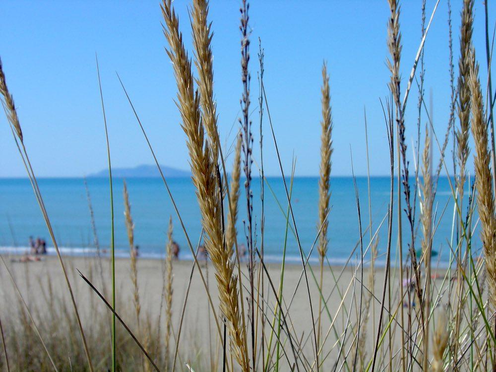 La spiaggia di Principina a Mare in provincia di Grosseto