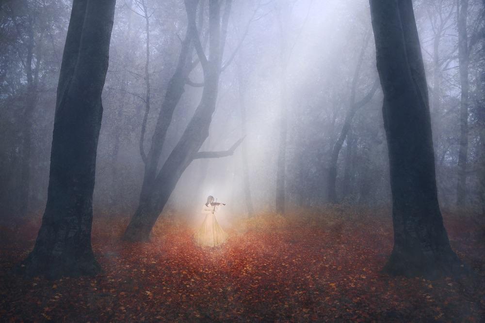 Il fantasma di una donna suona il violino nel bosco